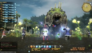Final Fantasy XIV (B2P) screenshot6