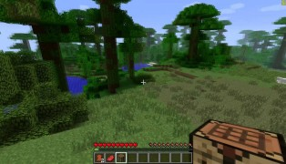 Minecraft screenshot7