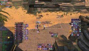 Perfect World International screenshot9