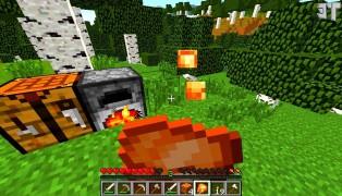 Minecraft screenshot6