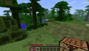 Minecraft screenshot7