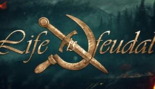 Life is Feudal screenshot10