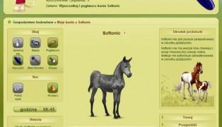 Equideow screenshot2