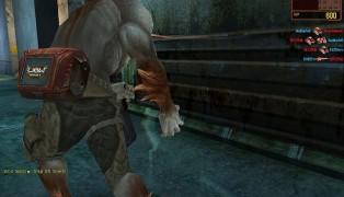 Wolf Team screenshot6