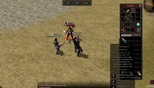 Metin2 screenshot5