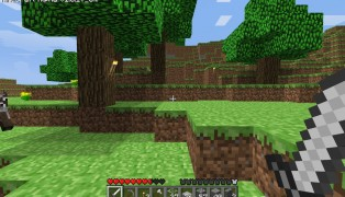 Minecraft screenshot8