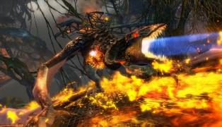 Guild Wars 2 screenshot10