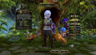 Dragon Nest screenshot8
