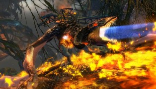 Guild Wars 2 screenshot10