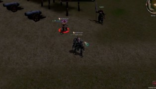 Metin2 screenshot2