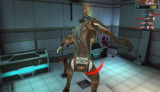 Wolf Team screenshot10
